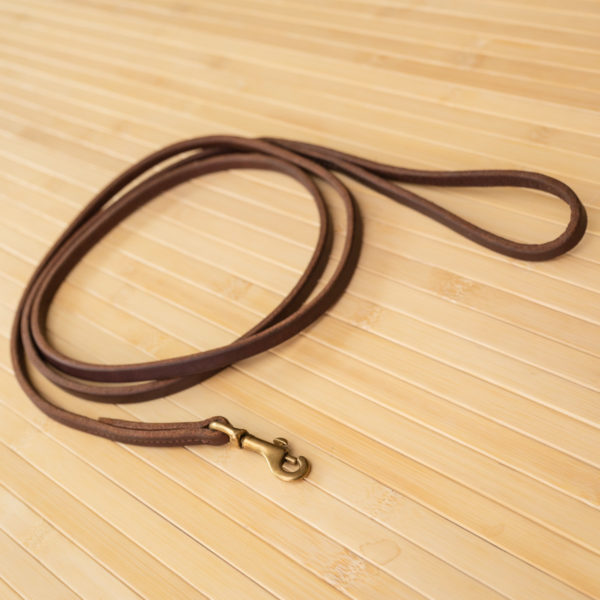 Small Dog Leash